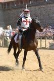 Cavaliere su un cavallo Immagini Stock