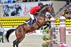 Cavaliere sul cavallo di salto di esposizione Fotografie Stock Libere da Diritti