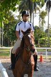 Cavaliere sul cavallo marrone Fotografia Stock Libera da Diritti