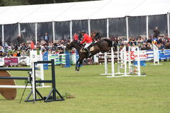 Cavaliere sul cavallo a Saumur Francia Immagine Stock Libera da Diritti