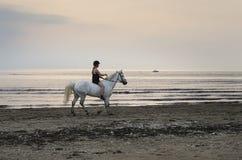 Cavaliere sulla spiaggia Fotografia Stock