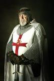 Cavaliere Templar Fotografie Stock Libere da Diritti