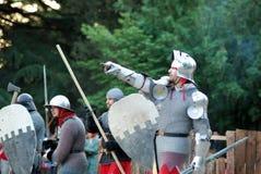 Cavalieri Immagine Stock
