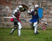 Cavalieri Fotografie Stock