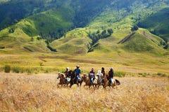 Cavalieri del cavallo in Savana Immagine Stock Libera da Diritti