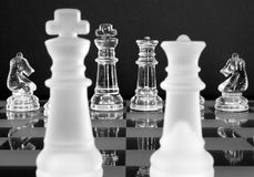 Cavalieri del re regina di scacchi Fotografie Stock