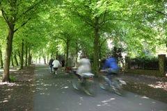 Cavalieri della bicicletta Fotografia Stock