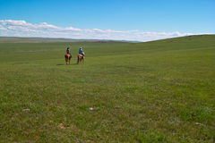Cavalieri di Horseback in pascolo Immagini Stock Libere da Diritti