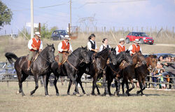 Cavalieri di Maremma toscano Fotografia Stock Libera da Diritti