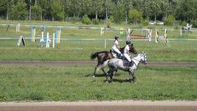 Cavalieri femminili sui cavalli al cane-trotto stock footage