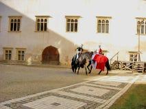 Cavalieri medievali in un castello Fotografia Stock Libera da Diritti
