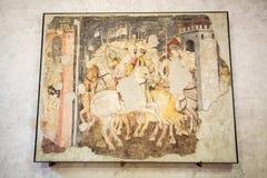 Cavalieri nel combattimento nel museo di Castelvecchio Verona, immagini stock libere da diritti