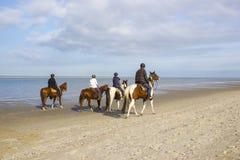 Cavalieri sui cavalli sulla spiaggia in Renesse, il Netherlan immagine stock libera da diritti