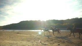 Cavaliers de cheval voyageant dans les montagnes banque de vidéos