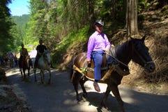 Cavallerizzi sulla strada della montagna Fotografia Stock Libera da Diritti