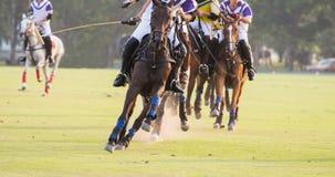 Cavalli che corrono nel polo Fotografia Stock