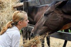 Cavalli d'alimentazione della ragazza Fotografie Stock Libere da Diritti