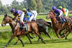Cavalli da corsa sulla pista di Partynice Fotografie Stock