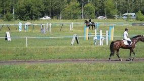 Cavalli da equitazione delle pulegge tendirici della donna video d archivio