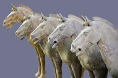 Cavalli dei guerrieri di terracotta Fotografia Stock Libera da Diritti