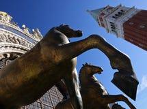 Cavalli della cattedrale del contrassegno della st Fotografia Stock