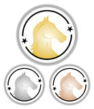 Cavalli della concorrenza Fotografie Stock Libere da Diritti