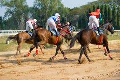 cavalli di corsa che iniziano una corsa Fotografia Stock