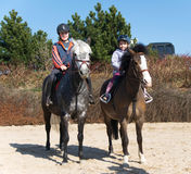 Cavalli di guida dei fratelli germani Fotografie Stock
