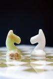 Cavalli di scacchi a bordo Fotografia Stock Libera da Diritti