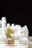 Cavalli di scacchi a bordo Immagine Stock Libera da Diritti