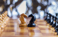 Cavalli di scacchi che restano fra l'ordine dei pegni Fotografia Stock Libera da Diritti