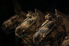 Cavalli di terracotta Fotografia Stock