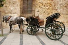 Cavalli e carrello per fare un giro turistico a Cordova Fotografia Stock Libera da Diritti