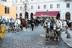 Cavalli e carrello, Vienna Fotografie Stock