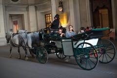 Cavalli e carrello, Vienna Fotografie Stock Libere da Diritti