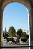 Cavalli e carrello, Vienna Immagine Stock Libera da Diritti