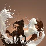 Cavalli liquidi del cioccolato cremoso e caldo Immagine Stock