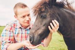 Cavalli miniatura sul pascolo Fotografia Stock Libera da Diritti