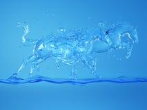 Cavalli nella spruzzata dell'acqua Fotografie Stock Libere da Diritti