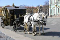 Cavalli in San Pietroburgo Fotografia Stock