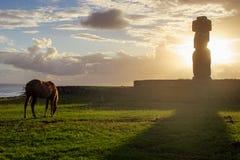 Cavalli su Isla de Pascua Rapa Nui pasqua Immagine Stock