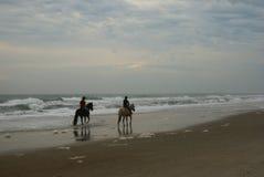Cavalli sulla spiaggia Fotografia Stock Libera da Diritti
