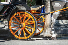 Cavalli tipici dello Spagnolo dell'automobile Fotografia Stock Libera da Diritti