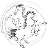 Cavalli (vettore) Immagine Stock