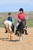 Cavallini di guida della ragazza e del ragazzo Fotografia Stock
