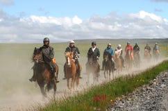 Cavallini selvaggi cresciuti puri dell'Islanda che sono guidati per il divertimento Fotografie Stock