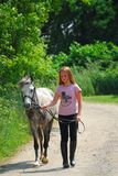 Cavallino della camminata della ragazza immagine stock