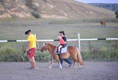 Cavallino di guida del bambino Fotografia Stock