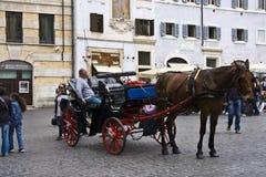 Cavallino e carrello Fotografia Stock