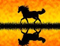 Cavallo illustrazione di stock